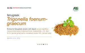 Cara Membuat Teh Herbal Cholbest
