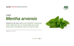 teh herbal Cholbest di supermarket